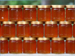 قیمت عمده شیشه عسل